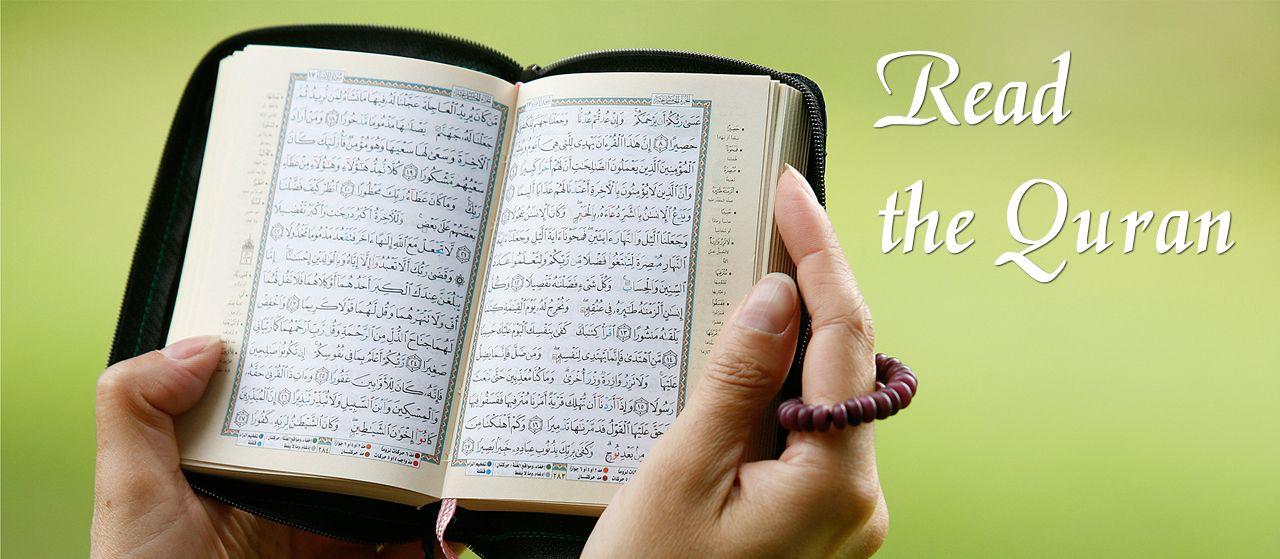 Read the Quran | Jannat Al Quran