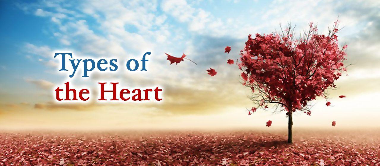 Healthy Heart | Dead Heart | Sick Heart | Jannat Al Quran