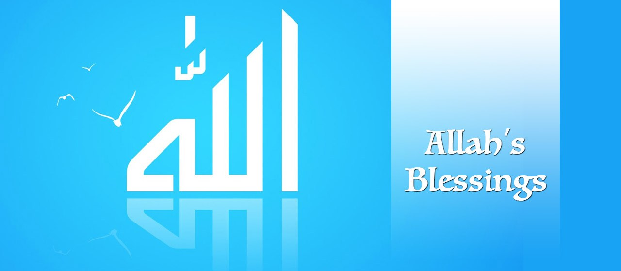 Allah's Blessings | Are you grateful to Allah's Blessings | Jannat Al Quran