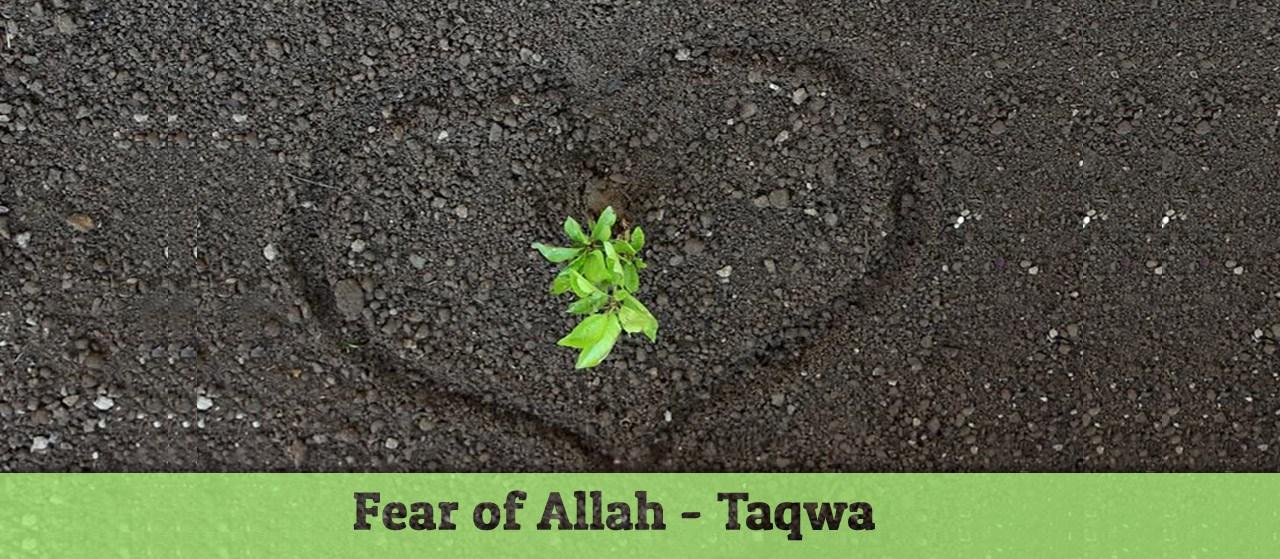 Fear of Allah - Taqwa | Conscious of Allah | Jannat Al Quran