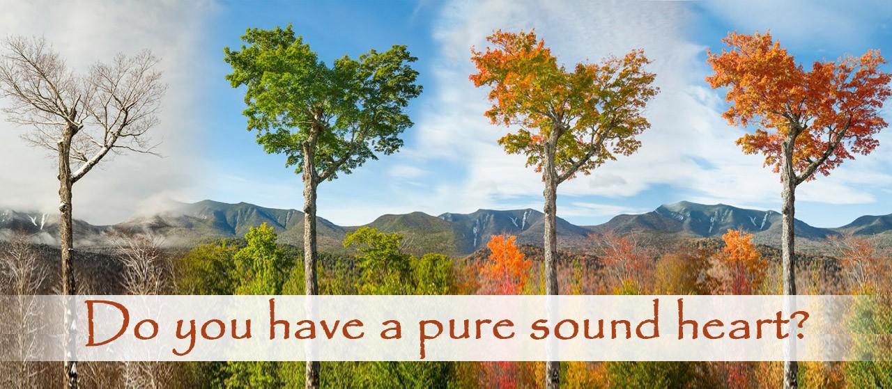 Sound heart | Sound Heart | Jannat Al Quran